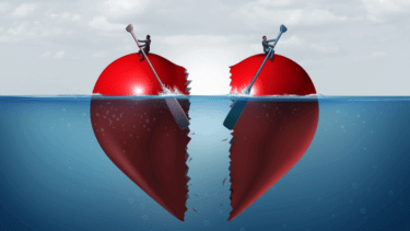 あびる優|親権及び育児は夫|離婚の原因は、あびる優の「酒」だけ?