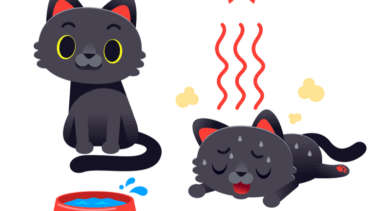 猫 脱水症状 ふらふら