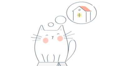 札幌で猫の里親募集は?保健所にもロシアンブルーやマンチカンは?