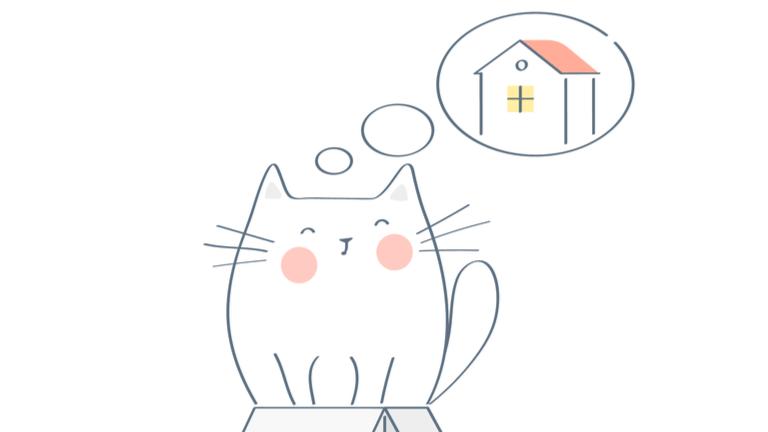 猫 札幌 里親募集