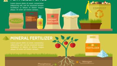 家庭菜園の肥料【現役農家が解説】おすすめの 種類や家庭で保管する方法を紹介