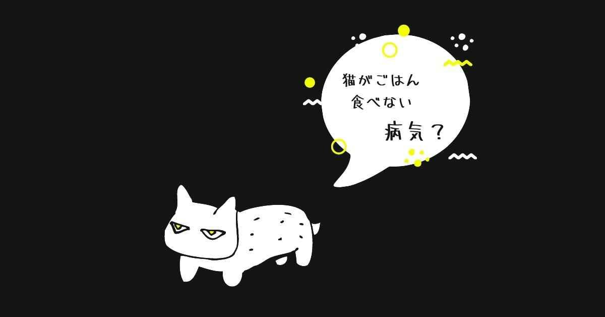 猫 ご飯を食べない (1)