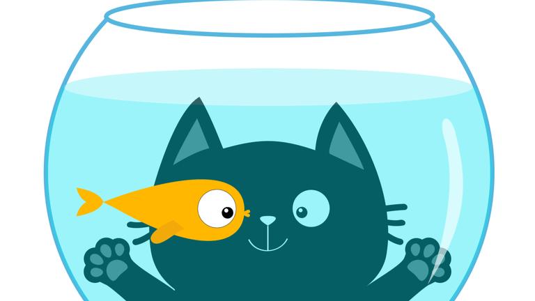猫 魚 だめ