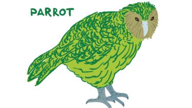 ニュージーランドの森に住む固有の鳥