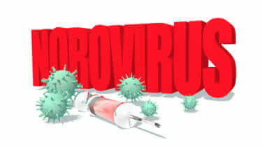 ノロウイルスの特徴ってなに?知っておきたい感染症とは|現役看護師が解説