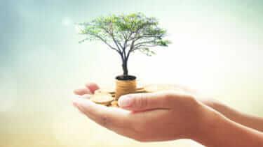 投資信託は儲かるのか儲からないのか?儲けるために必要なこと?
