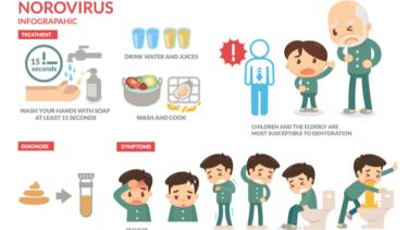 ノロウイルスの流行時期っていつなの?現役看護師が解説