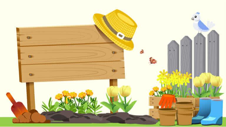 家庭菜園 土作り 時期