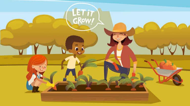 家庭菜園 土作り 時期 秋の家庭菜園