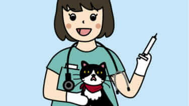 猫のワクチン接種は遅れても平気?|猫のワクチン