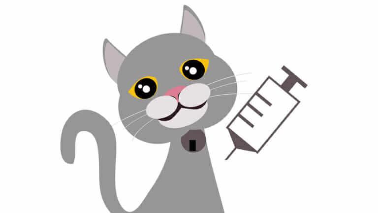 猫 ワクチン