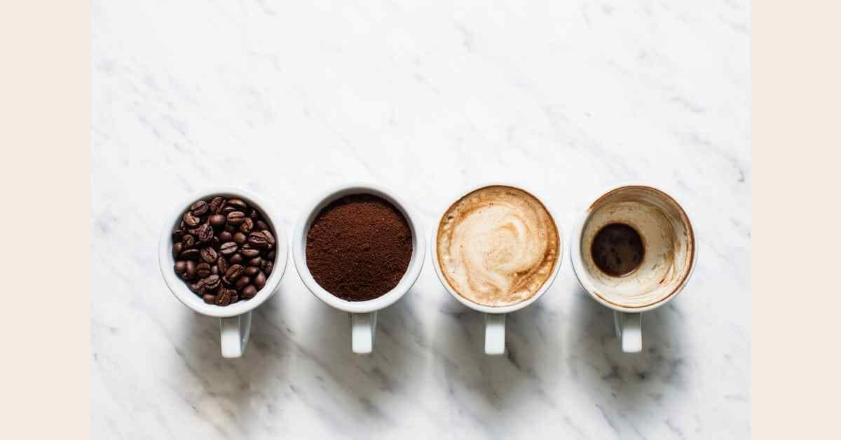 コーヒー 腎臓 (1)