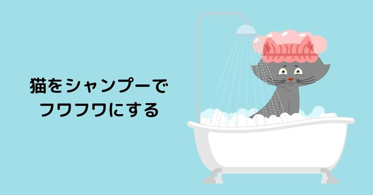 猫をシャンプーで フワフワにする