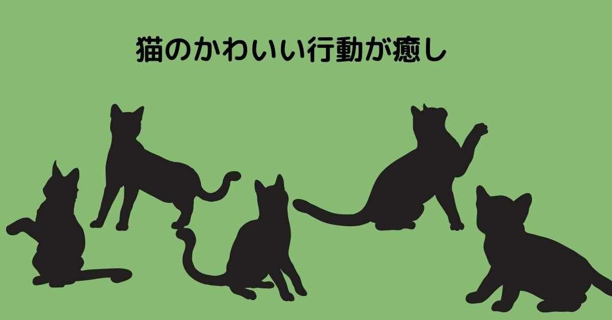 猫 かわいい 癒し