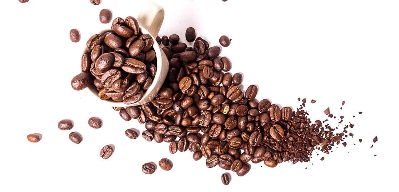 キリマンジャロ コーヒー (1)