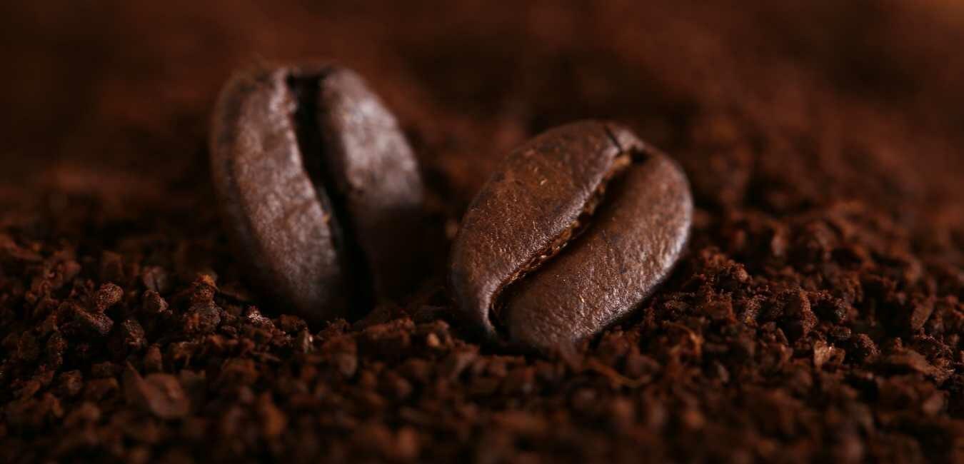 コーヒー 種類 知識